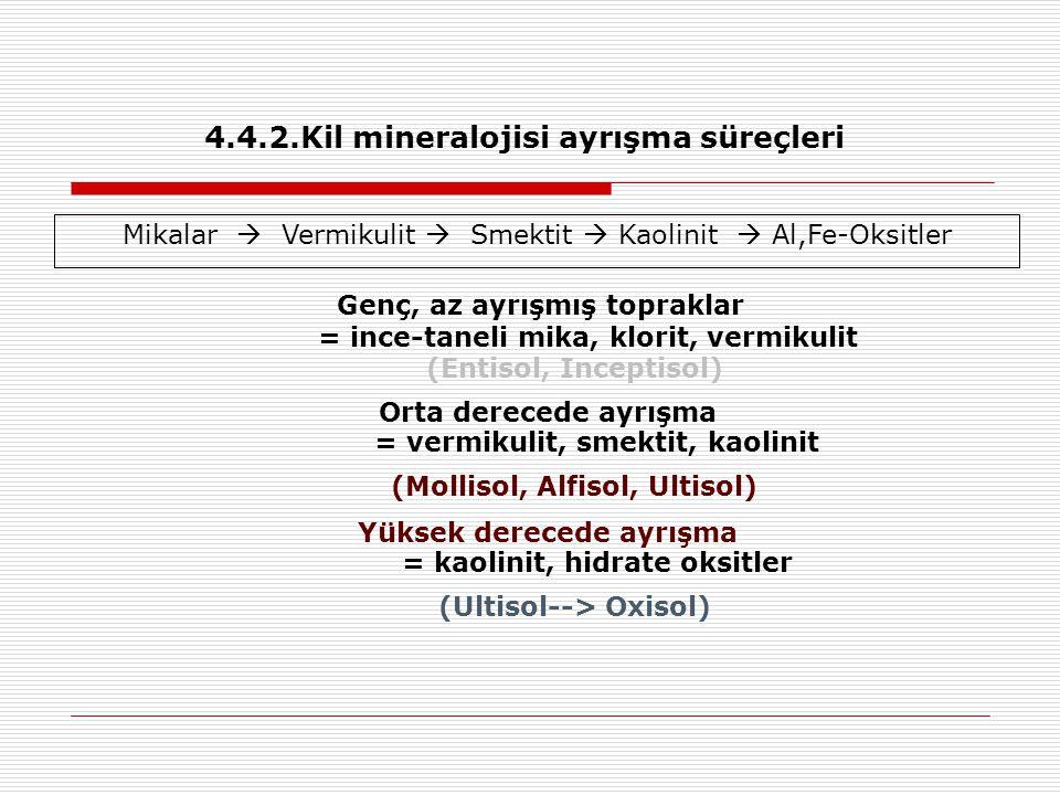 4.4.2.Kil mineralojisi ayrışma süreçleri