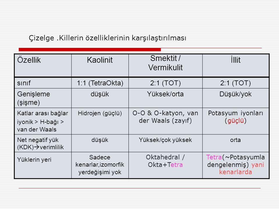 Özellik Kaolinit Smektit / Vermikulit İllit