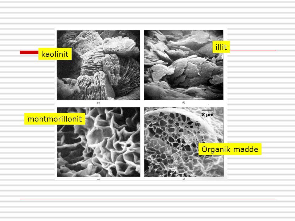 illit kaolinit montmorillonit Organik madde