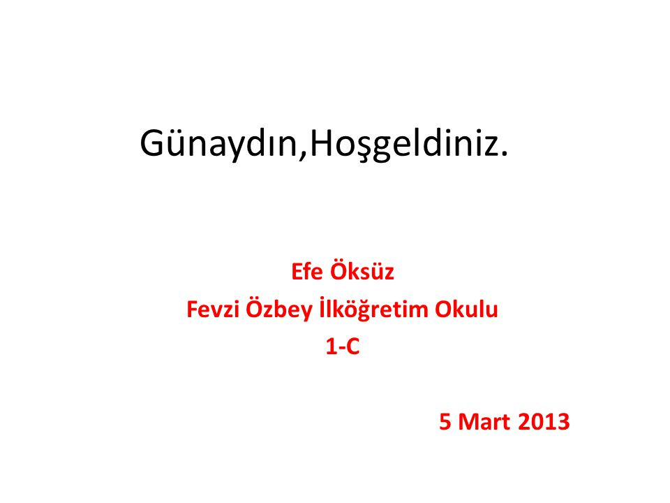 Efe Öksüz Fevzi Özbey İlköğretim Okulu 1-C 5 Mart 2013
