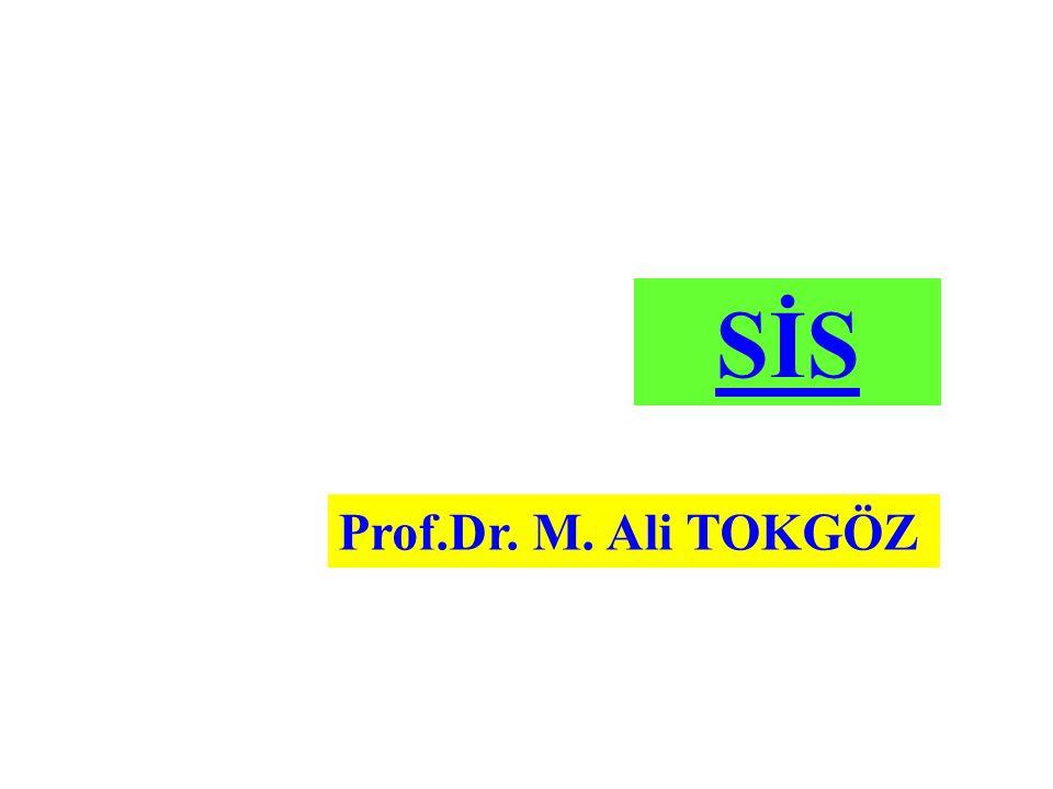 SİS Prof.Dr. M. Ali TOKGÖZ