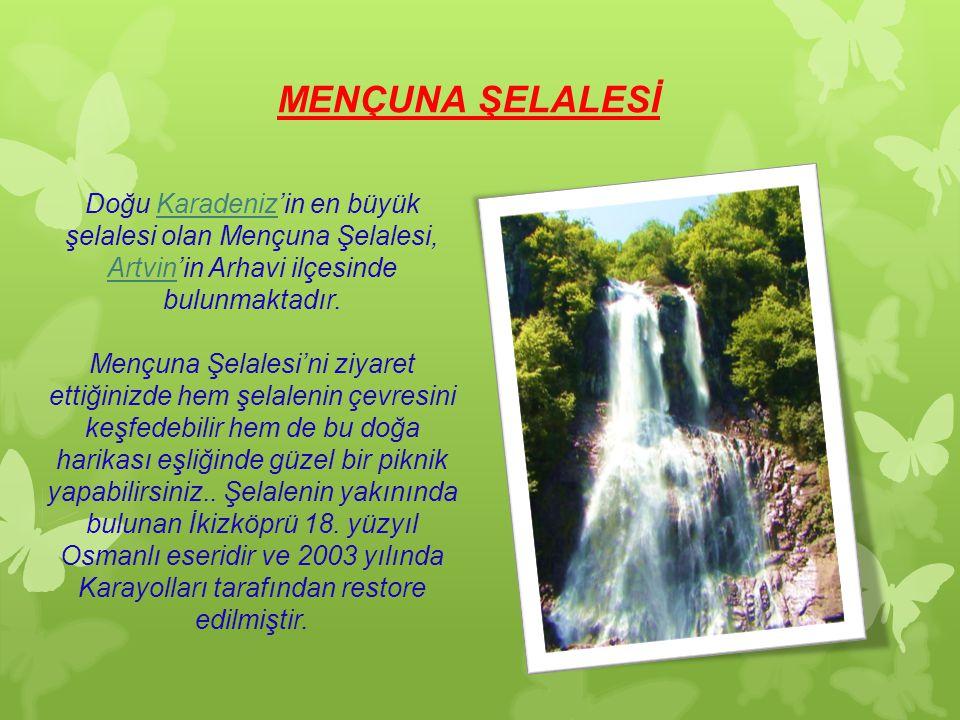 MENÇUNA ŞELALESİ