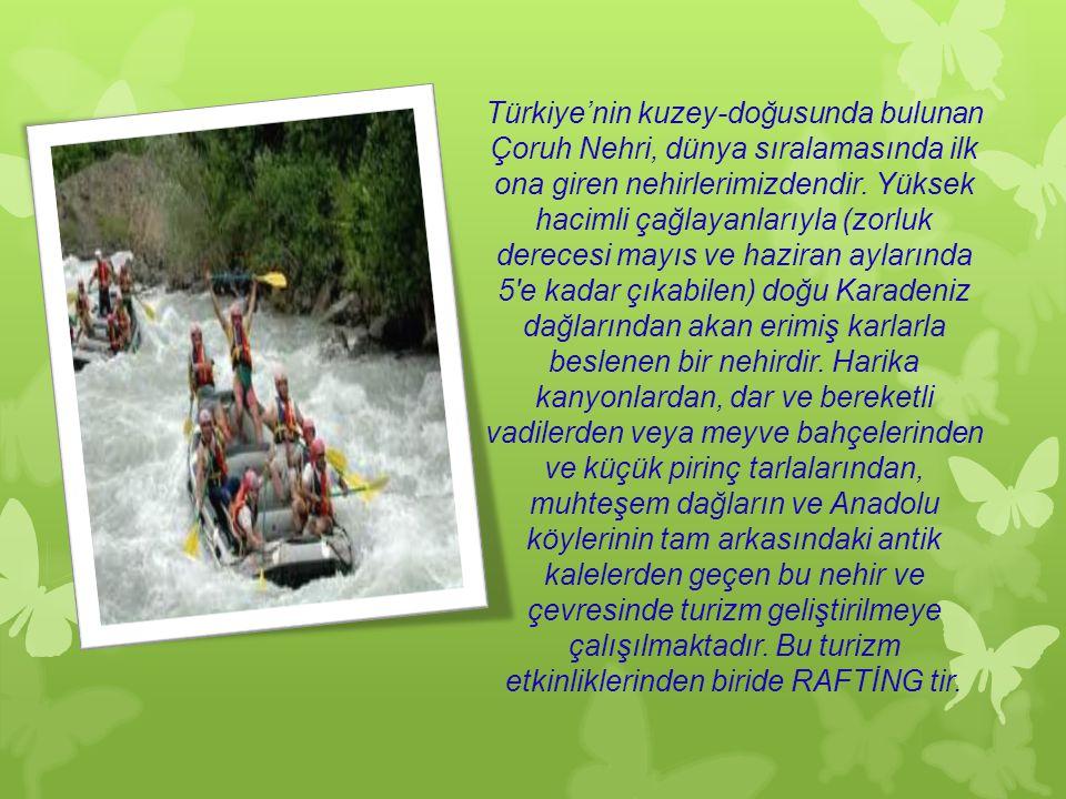 Türkiye'nin kuzey-doğusunda bulunan Çoruh Nehri, dünya sıralamasında ilk ona giren nehirlerimizdendir.