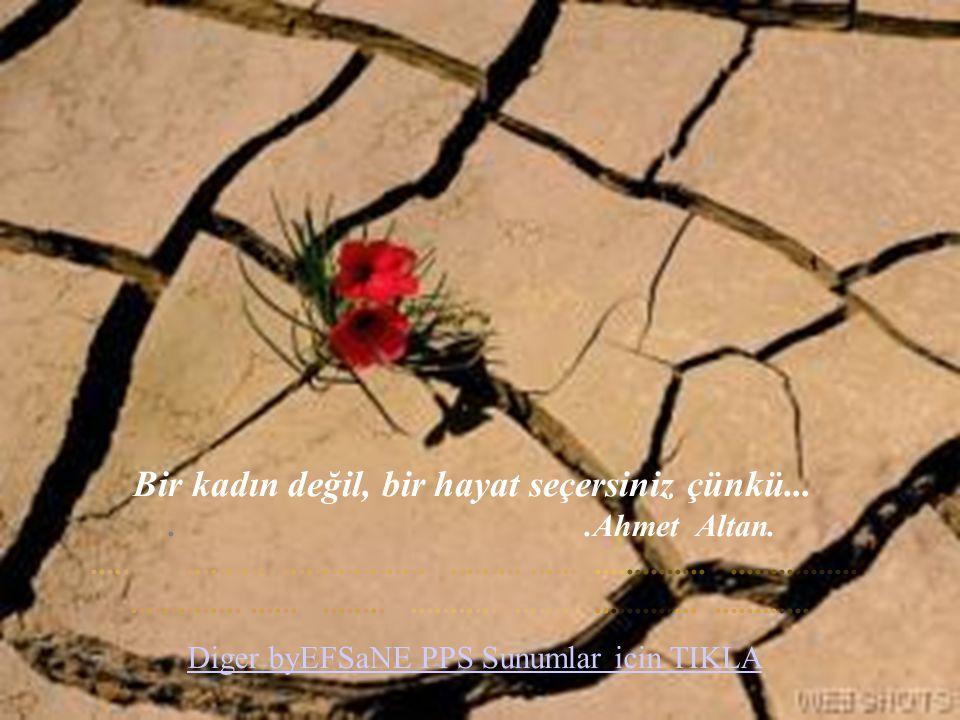 Bir kadın değil, bir hayat seçersiniz çünkü... . .Ahmet Altan. ..... .......... .................. ......... ...... .............. ................ .............. ...... ........ ........... ........ ............. ............