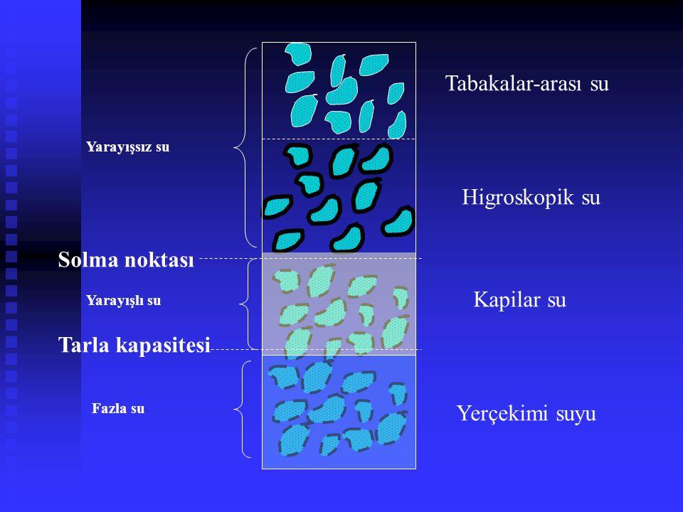 Tabakalar-arası su Higroskopik su Solma noktası Kapilar su