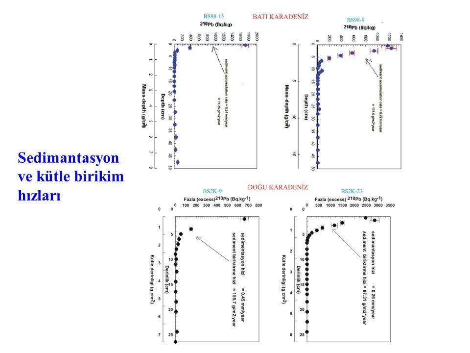 Sedimantasyon ve kütle birikim hızları