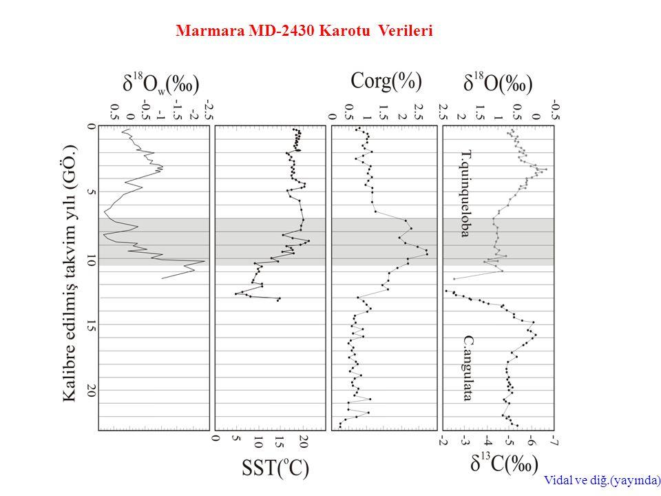Marmara MD-2430 Karotu Verileri