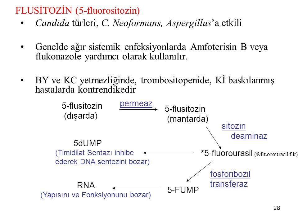 FLUSİTOZİN (5-fluorositozin)
