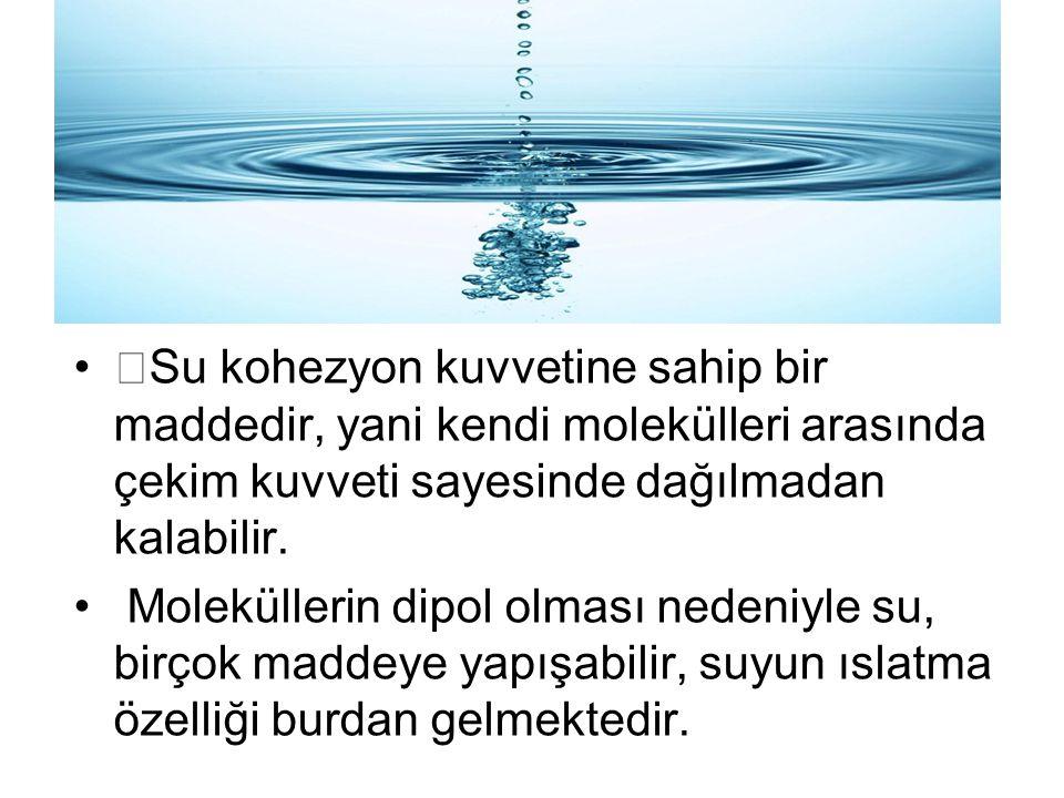 •Su kohezyon kuvvetine sahip bir maddedir, yani kendi molekülleri arasında çekim kuvveti sayesinde dağılmadan kalabilir.