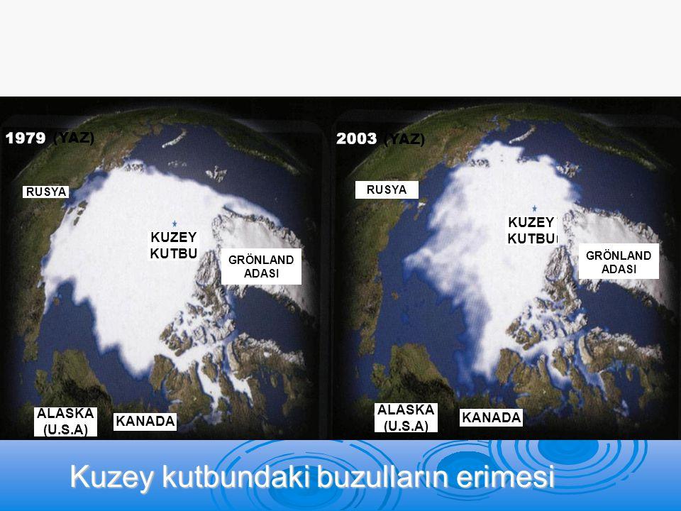 Kuzey kutbundaki buzulların erimesi