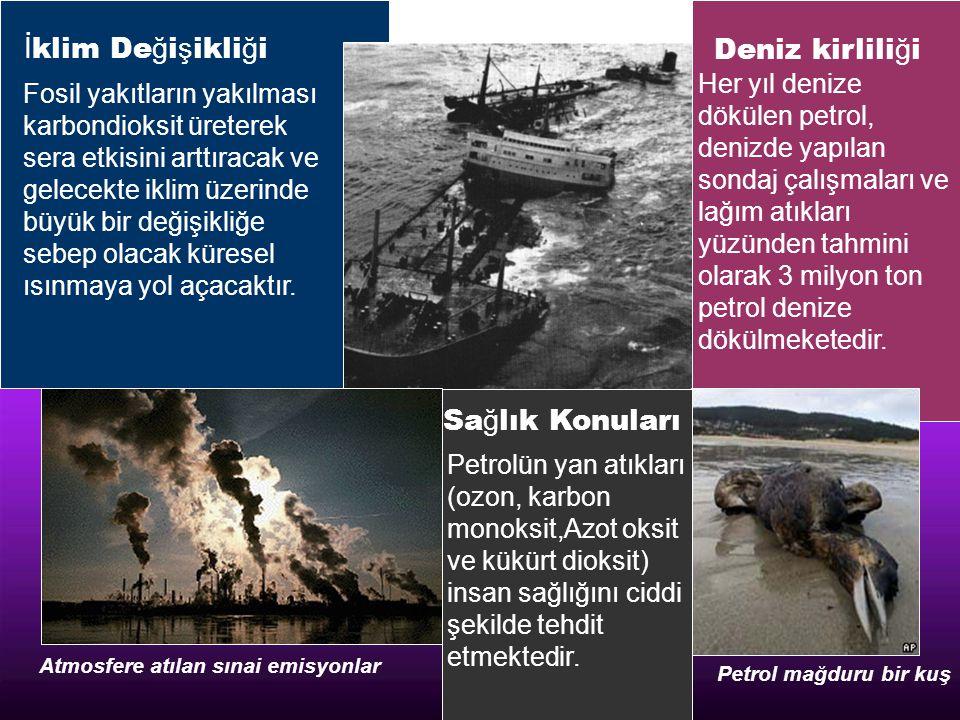 İklim Değişikliği Deniz kirliliği Sağlık Konuları