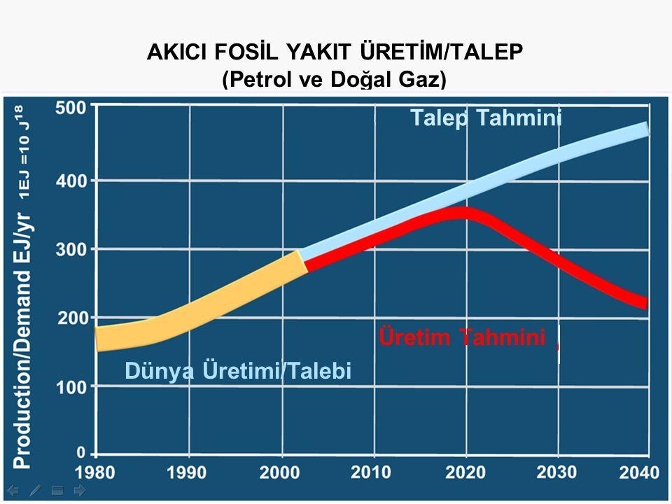AKICI FOSİL YAKIT ÜRETİM/TALEP (Petrol ve Doğal Gaz)