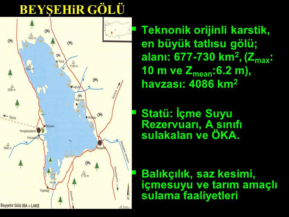 BEYŞEHiR GÖLÜ Teknonik orijinli karstik, en büyük tatlısu gölü; alanı: 677-730 km2, (Zmax: 10 m ve Zmean:6.2 m), havzası: 4086 km2.