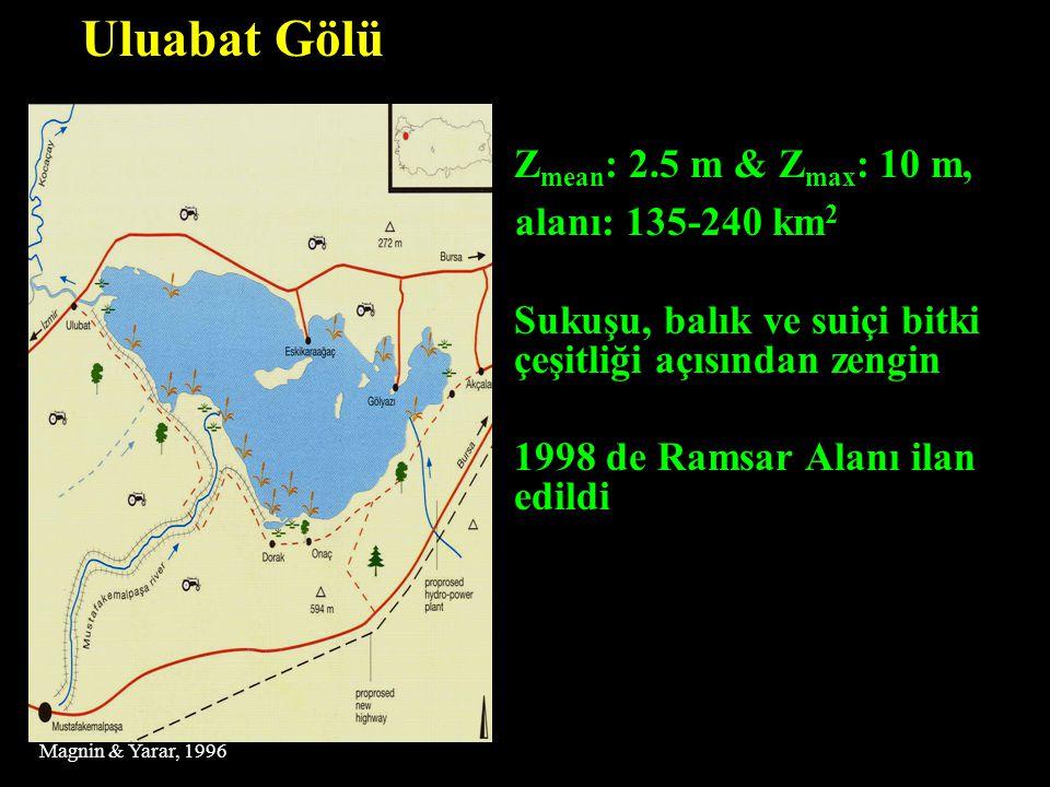 Uluabat Gölü Zmean: 2.5 m & Zmax: 10 m, alanı: 135-240 km2