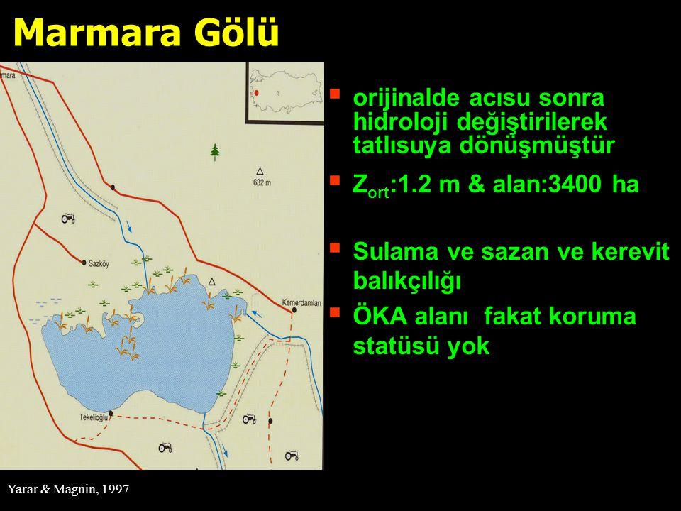 Marmara Gölü orijinalde acısu sonra hidroloji değiştirilerek tatlısuya dönüşmüştür. Zort:1.2 m & alan:3400 ha.