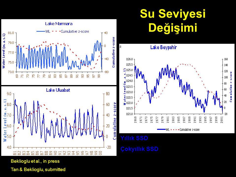 Su Seviyesi Değişimi Yıllık SSD Çokyıllık SSD