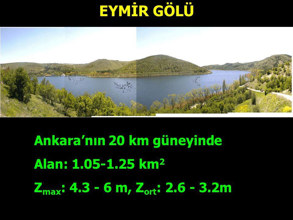 EYMİR GÖLÜ Ankara'nın 20 km güneyinde Alan: 1.05-1.25 km2