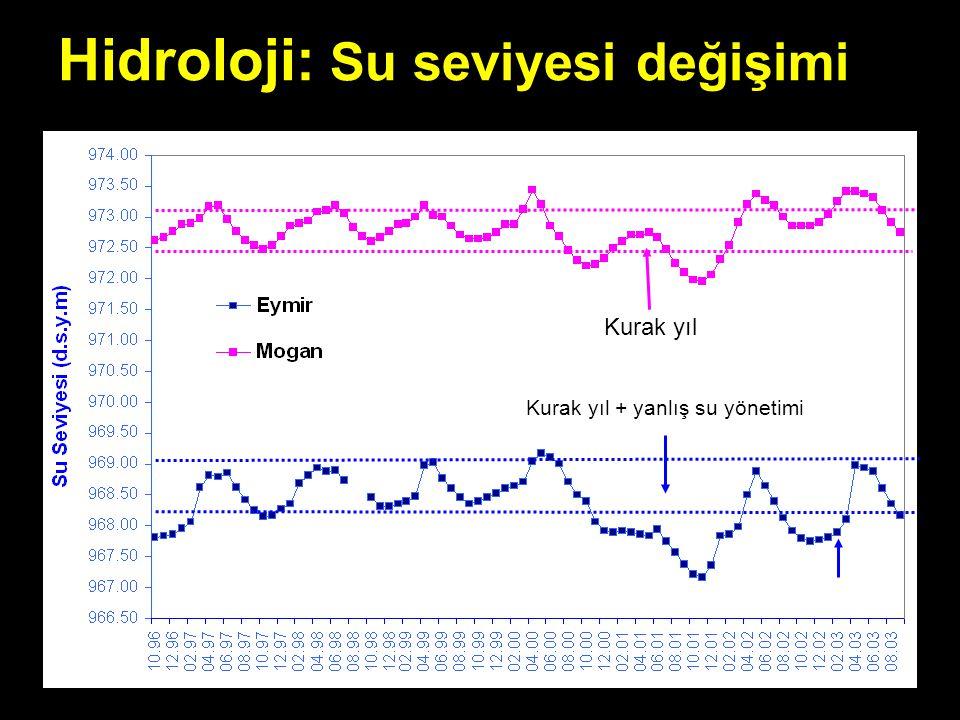 Hidroloji: Su seviyesi değişimi