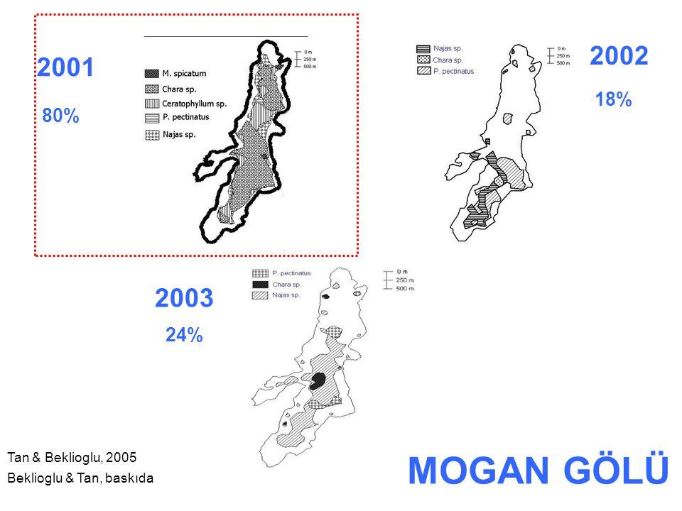 MOGAN GÖLÜ 2002 2001 2003 18% 80% 24% Tan & Beklioglu, 2005