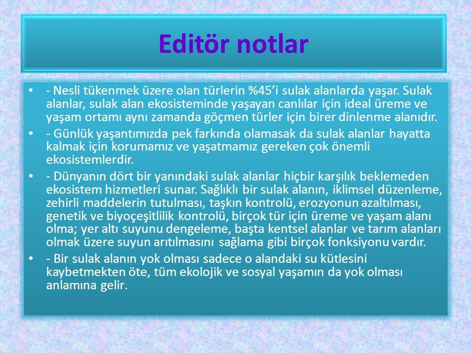 Editör notlar