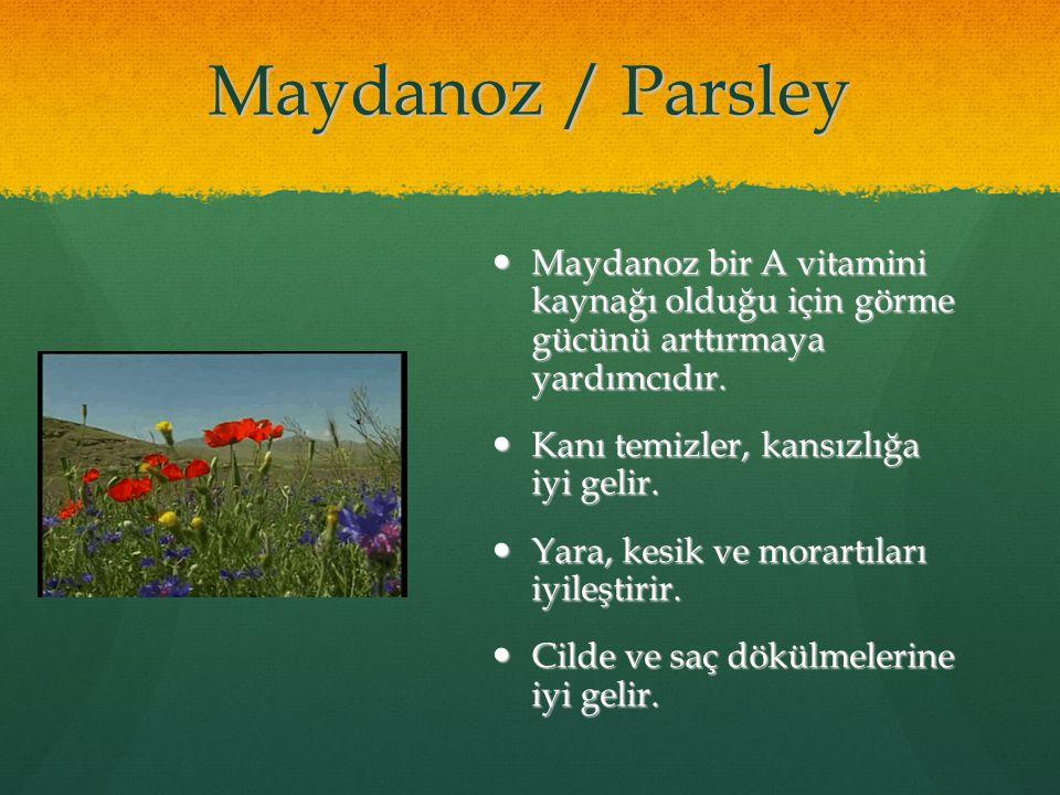 09/05/11 Maydanoz / Parsley. Maydanoz bir A vitamini kaynağı olduğu için görme gücünü arttırmaya yardımcıdır.