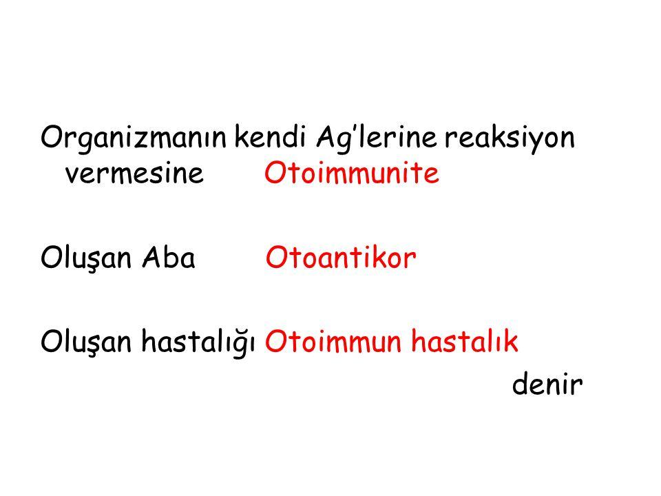 Organizmanın kendi Ag'lerine reaksiyon vermesine Otoimmunite
