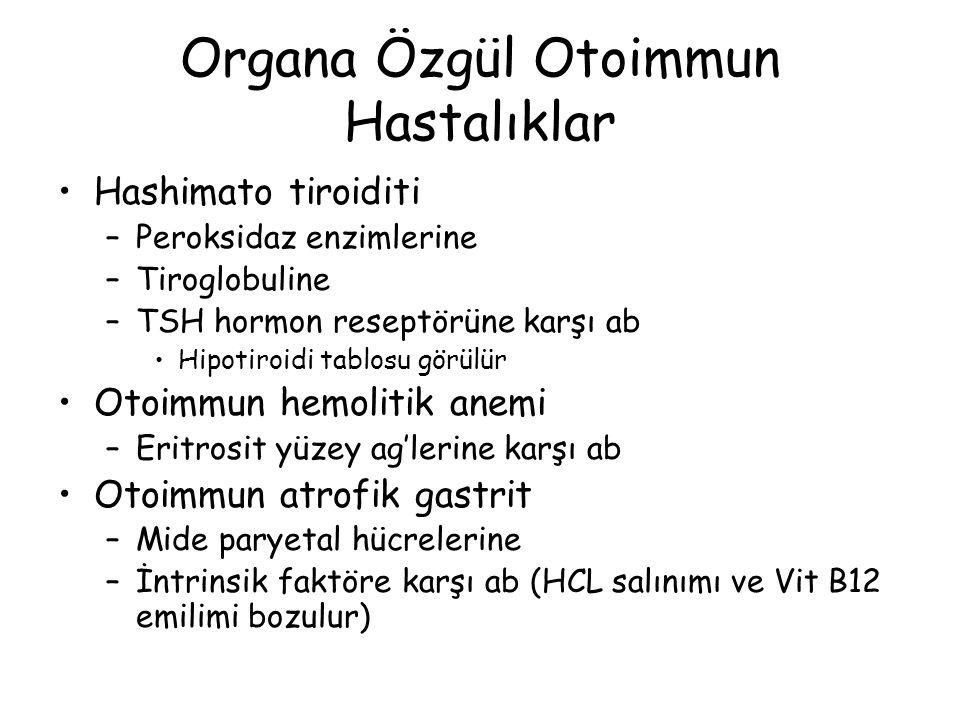 Organa Özgül Otoimmun Hastalıklar