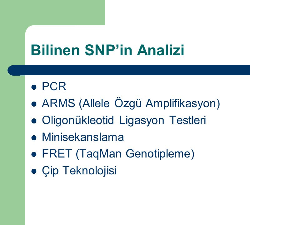 Bilinen SNP'in Analizi