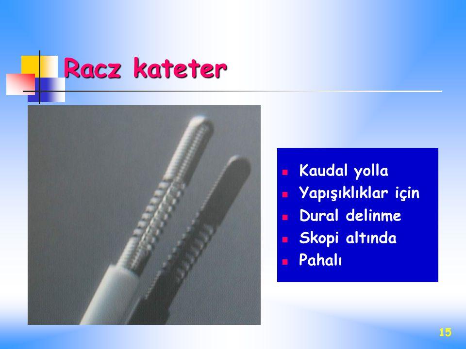 Racz kateter Kaudal yolla Yapışıklıklar için Dural delinme