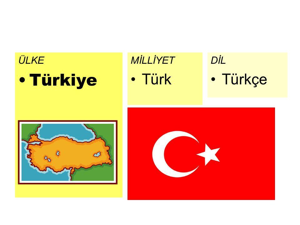 ÜLKE Türkiye MİLLİYET Türk DİL Türkçe