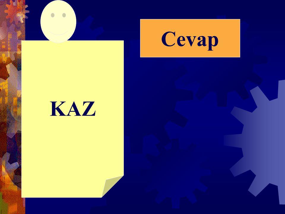 Cevap KAZ