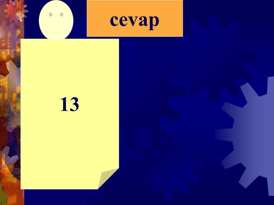 cevap 13