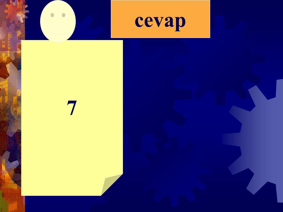 cevap 7