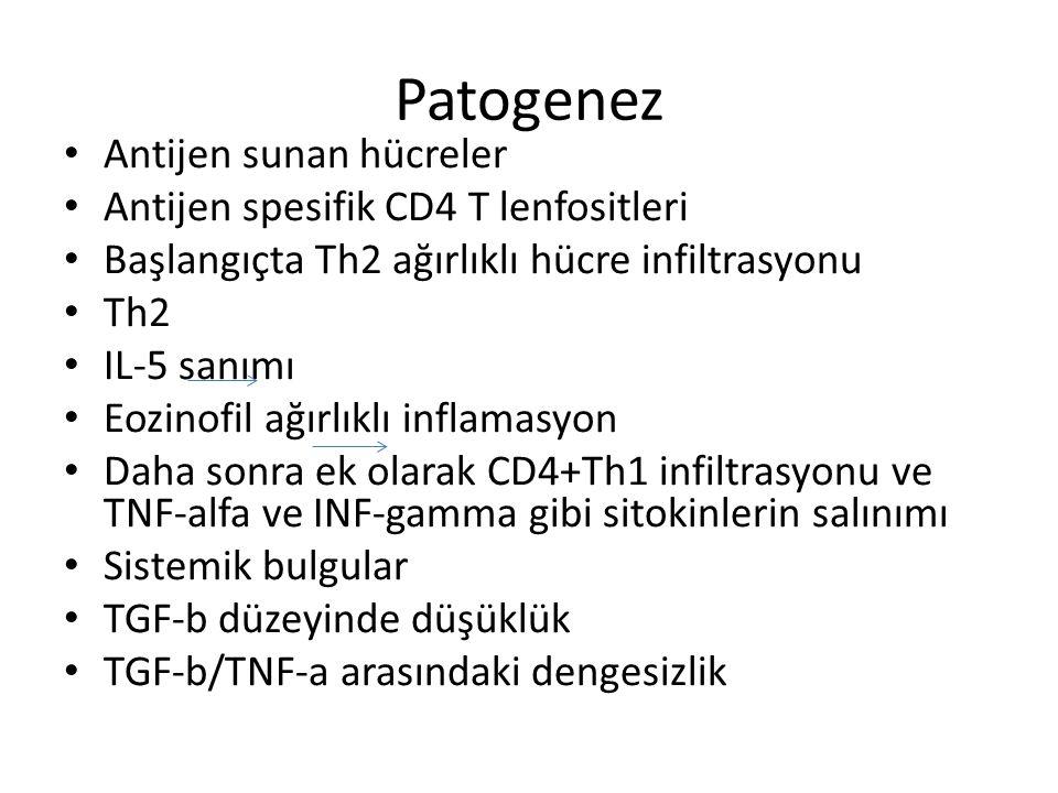 Patogenez Antijen sunan hücreler Antijen spesifik CD4 T lenfositleri