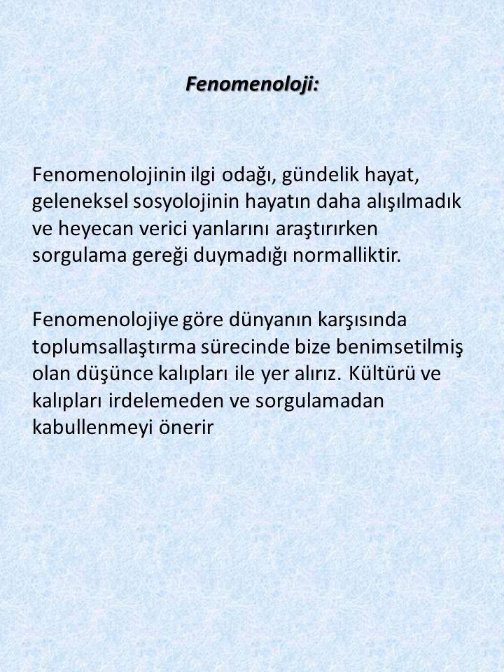 Fenomenoloji: