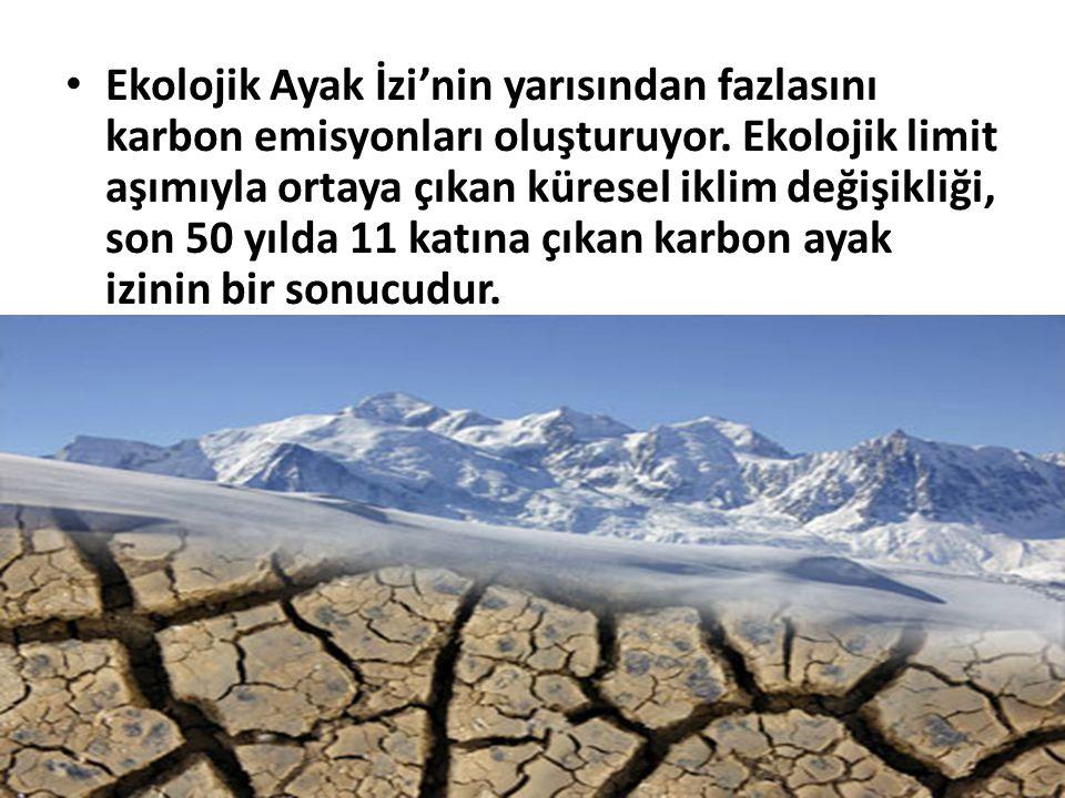 Ekolojik Ayak İzi'nin yarısından fazlasını karbon emisyonları oluşturuyor.