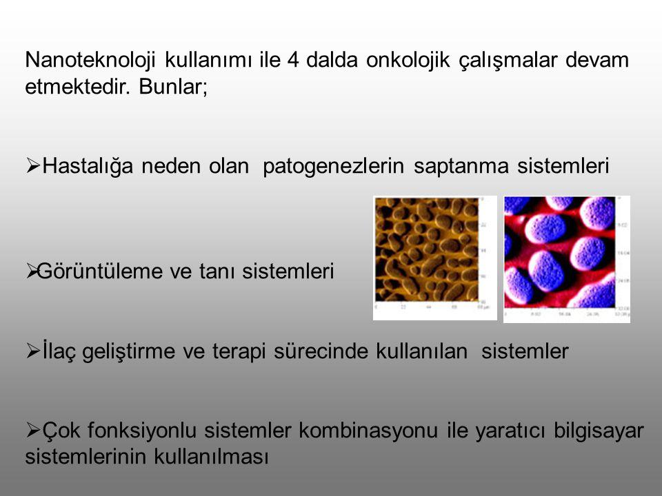Nanoteknoloji kullanımı ile 4 dalda onkolojik çalışmalar devam etmektedir. Bunlar;