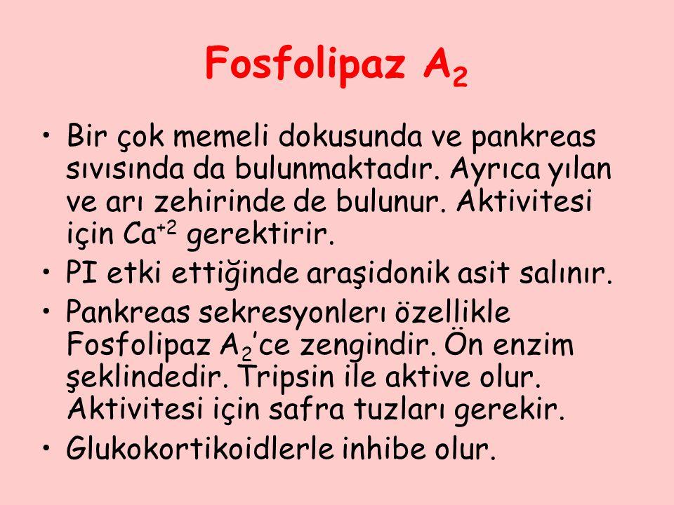 Fosfolipaz A2