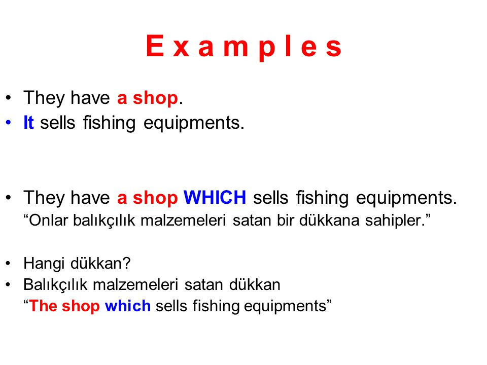 E x a m p l e s They have a shop. It sells fishing equipments.