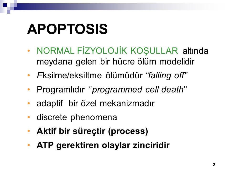 APOPTOSIS NORMAL FİZYOLOJİK KOŞULLAR altında meydana gelen bir hücre ölüm modelidir. Eksilme/eksiltme ölümüdür falling off