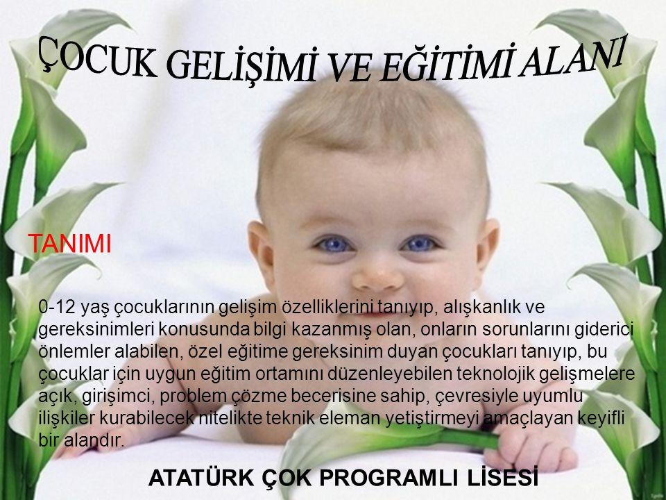 ATATÜRK ÇOK PROGRAMLI LİSESİ
