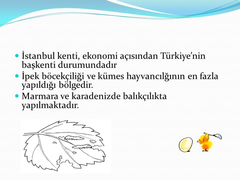 İstanbul kenti, ekonomi açısından Türkiye'nin başkenti durumundadır