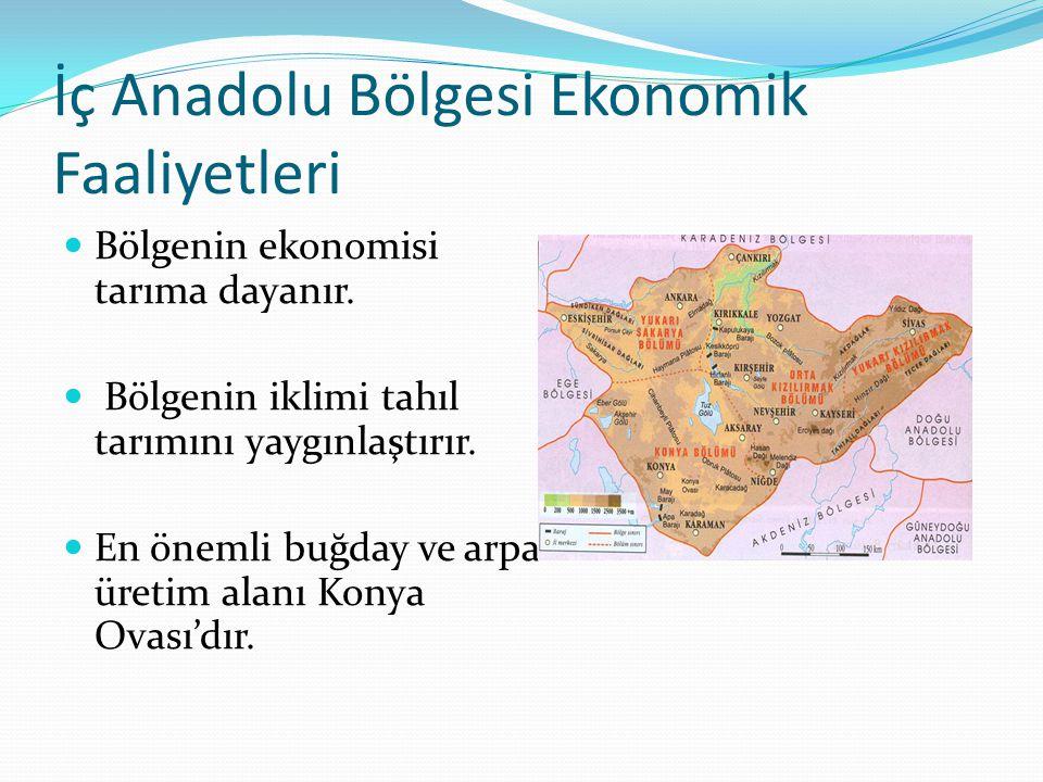 İç Anadolu Bölgesi Ekonomik Faaliyetleri