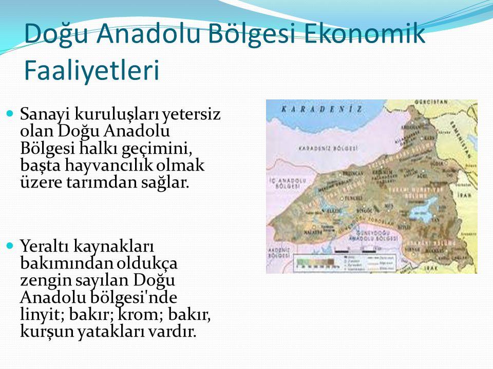 Doğu Anadolu Bölgesi Ekonomik Faaliyetleri