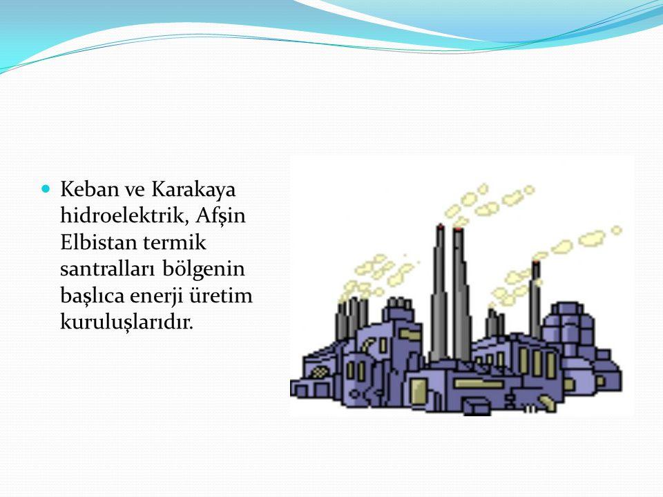 Keban ve Karakaya hidroelektrik, Afşin Elbistan termik santralları bölgenin başlıca enerji üretim kuruluşlarıdır.