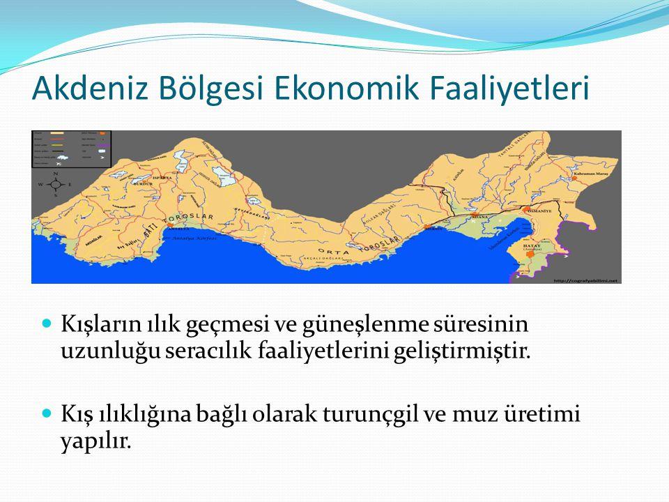 Akdeniz Bölgesi Ekonomik Faaliyetleri