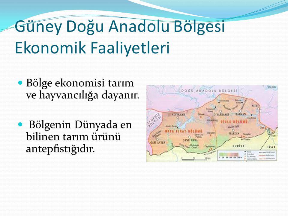 Güney Doğu Anadolu Bölgesi Ekonomik Faaliyetleri