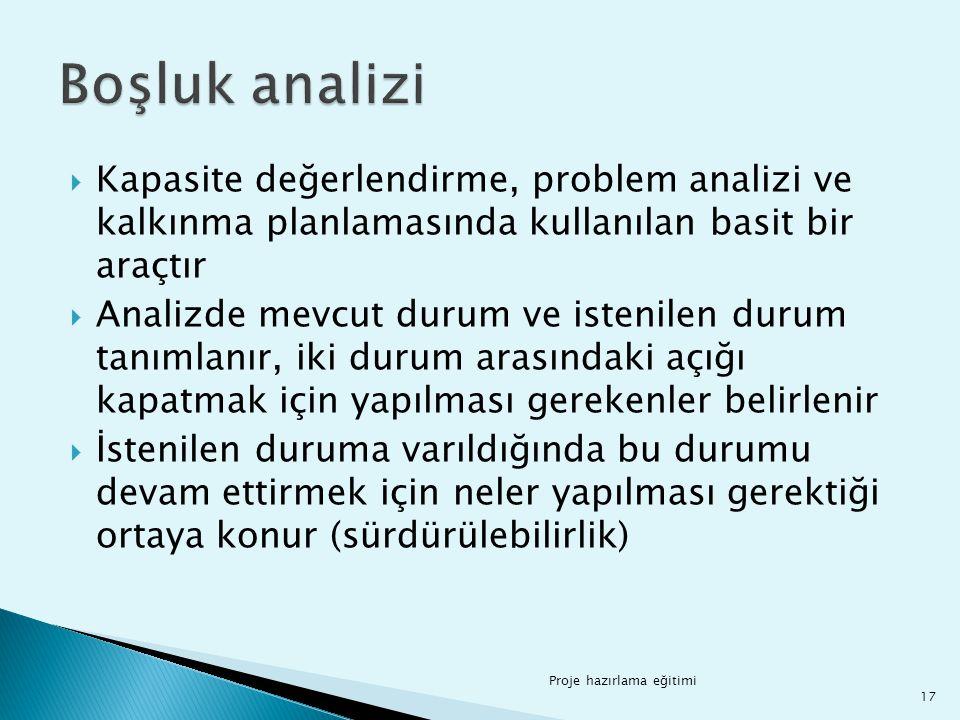 Boşluk analizi Kapasite değerlendirme, problem analizi ve kalkınma planlamasında kullanılan basit bir araçtır.