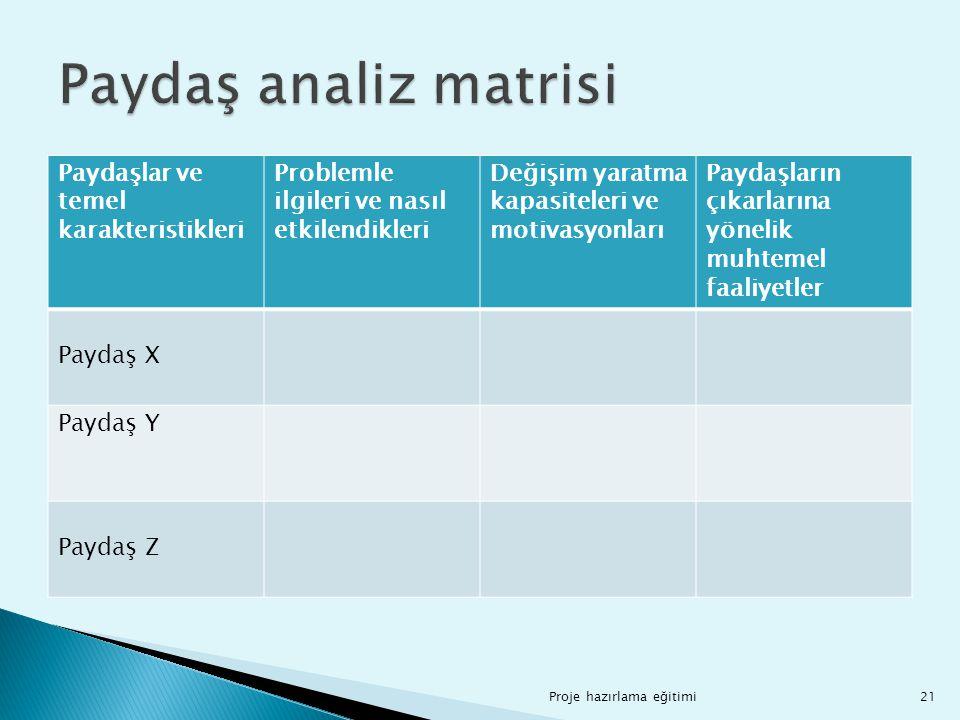 Paydaş analiz matrisi Paydaşlar ve temel karakteristikleri
