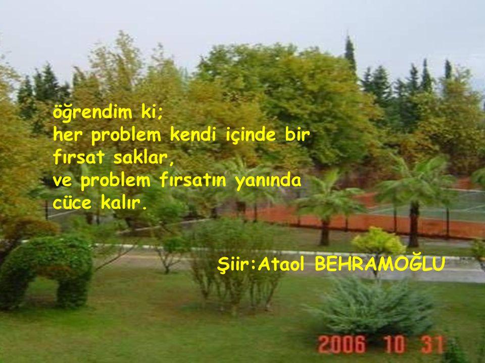 öğrendim ki; her problem kendi içinde bir fırsat saklar, ve problem fırsatın yanında cüce kalır.
